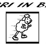 banner corsa corri in brat 2014
