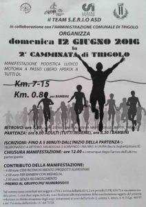 volantino-camminata-di-trigolo-2016